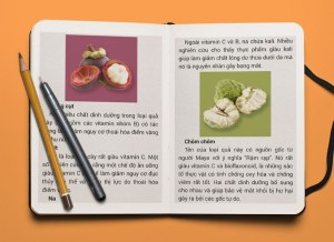 Sketchbook-MockUp-PSD-litrcq3